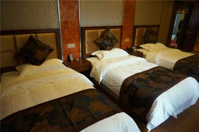 酒店客房家具(二十)